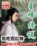 星峰传说封面/