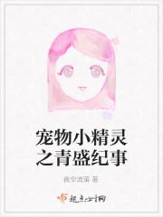 宠物小精灵之青盛纪事封面/