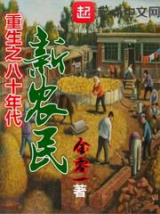 重生之八十年代新农民封面/